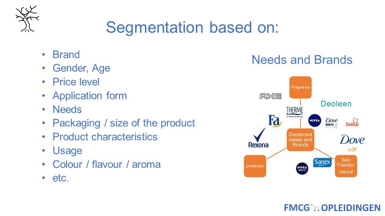 CDT segmentatiom
